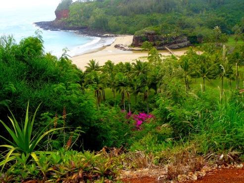 Hawaii13 018