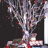 The Slide Years: Christmas Tree