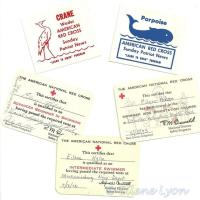 From the Vault: Swimming Lessons